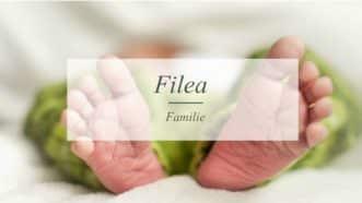 Filea | Familienblog | Münsterblogs.de